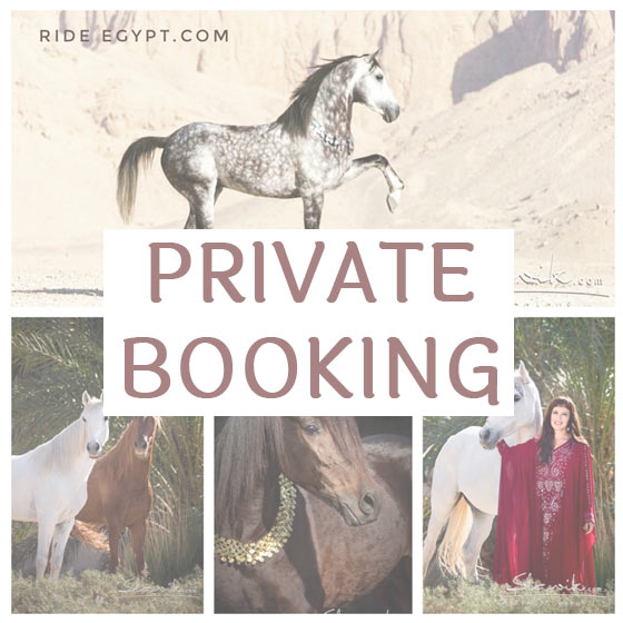 Ride Egypt Private Booking