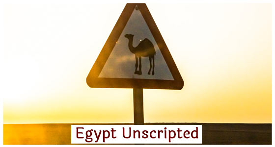 Egypt Unscripted