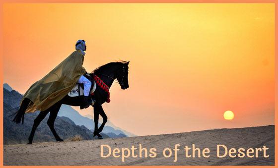 Depths of the Desert